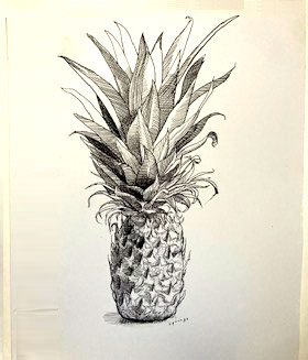 St Marys Bourne Street - Pineapple Drawing